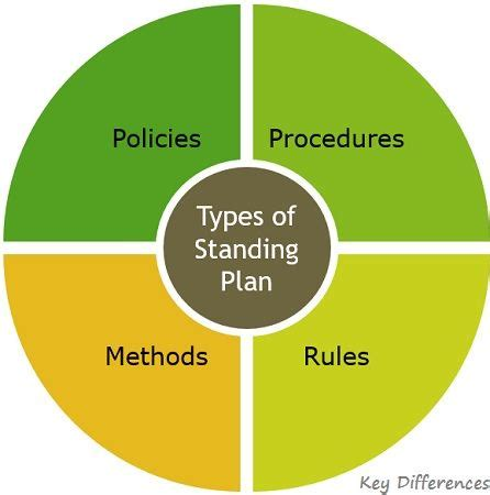 Describe The Types Of Standing Plan