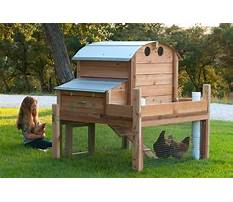 Best Directions for building a small chicken coop