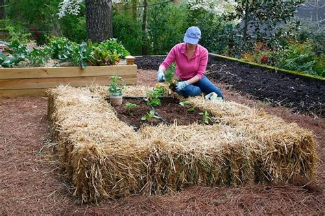 Diy Alfalfa Bale Raised Bed