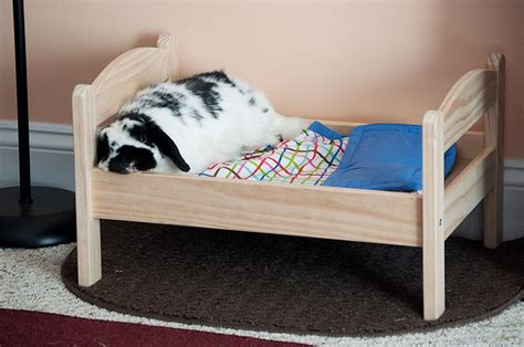 Diy Bedding For Bunny