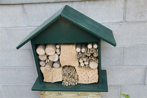 Diy Bee Nest Box