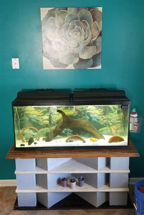 Diy Bench For 50 Gallon Aquarium