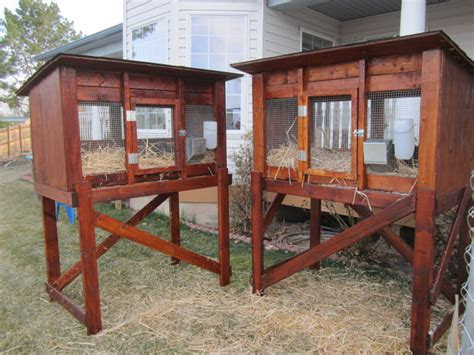 Diy Bunny Hutch Instructions