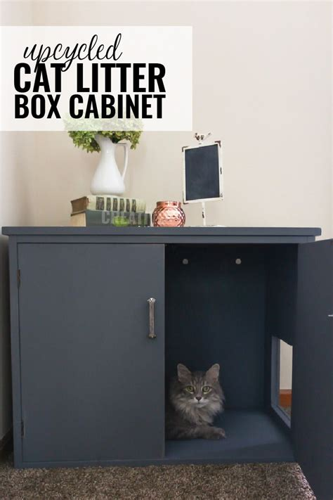 Diy Cabinet Litter Box