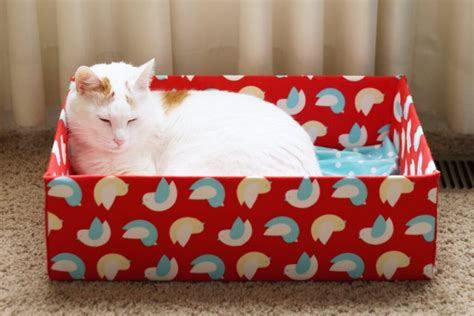 Diy Cardboard Box Cat Bed