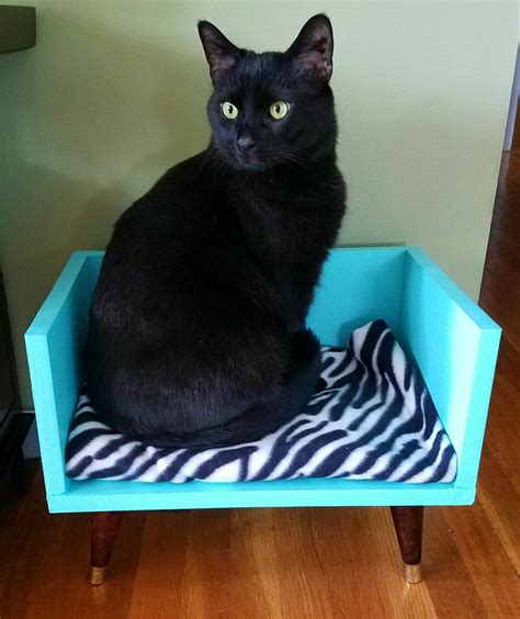Diy Cat Bed Pinterest
