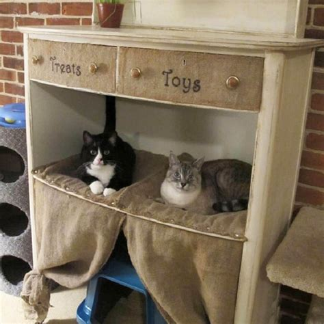 Diy Cat Beds And Furniture