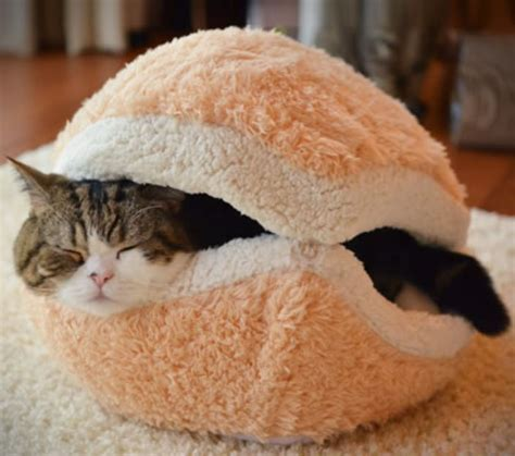 Diy Cat Burger Bed
