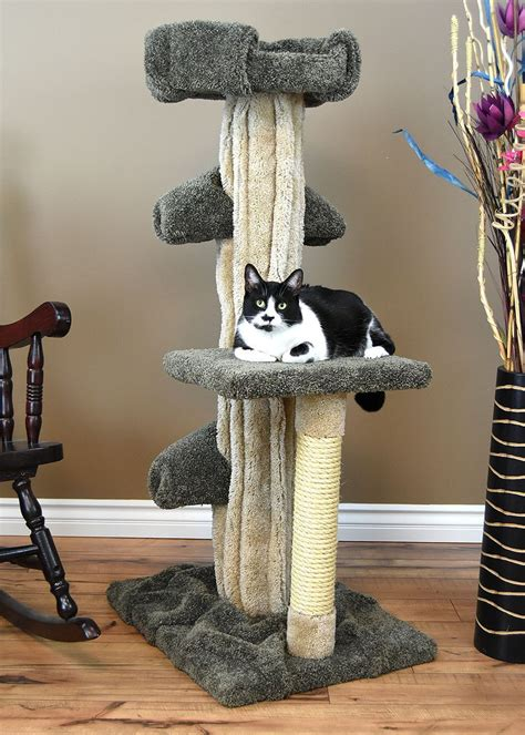 Diy Cat Condo For A Large Cat
