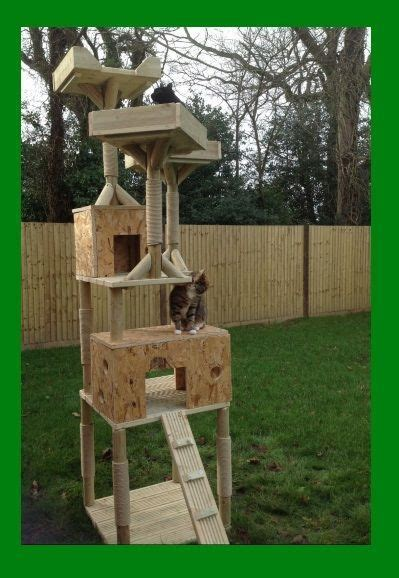 Diy Cat Condos And Climbing Outdoors Unlimited