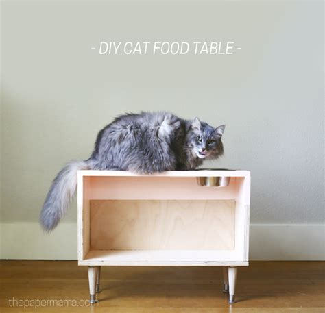 Diy Cat Food Table