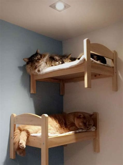 Diy Cat Furniture Ikea