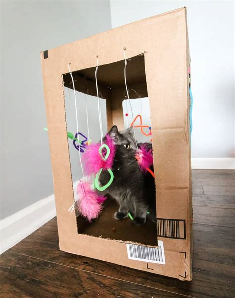 Diy Cat Play Box With Finger