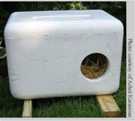 Diy Cat Shelter With Styrpfoam Ice Chest