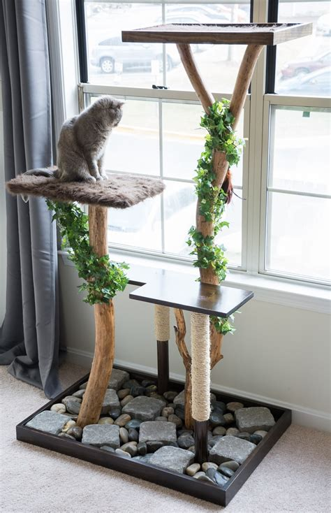 Diy Cat Tower Real Branches