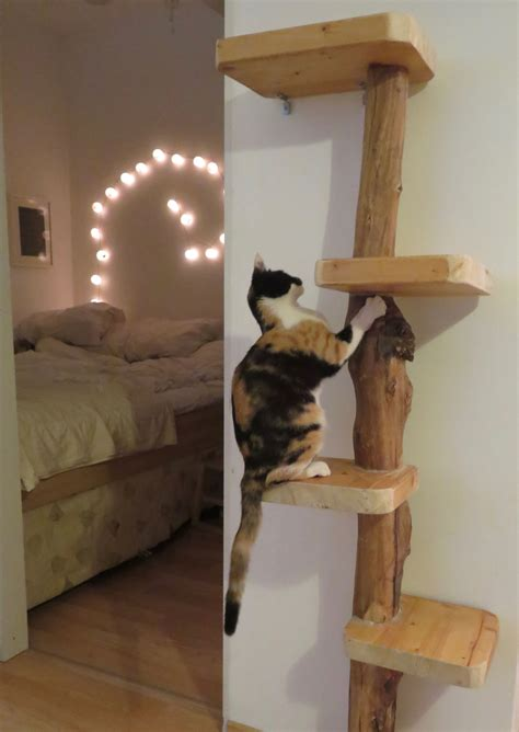 Diy Cat Tree Bed
