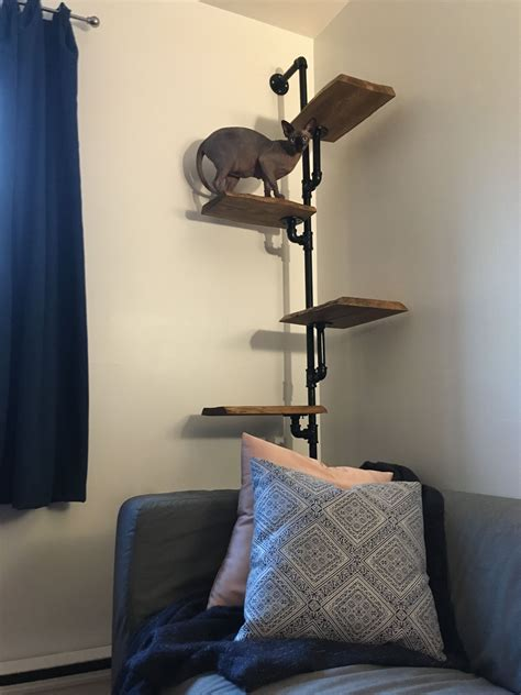 Diy Cat Tree Wall Images