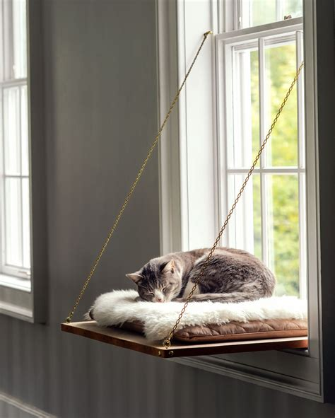 Diy Cat Window Bed Perches
