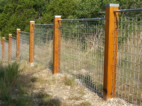 Diy Cattle Fencing