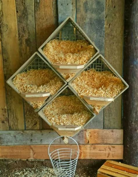 Diy Chicken Nesting Boxes To Keep Eggs Clean