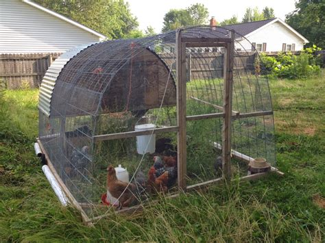 Diy Chicken Tractor For Day Ranging