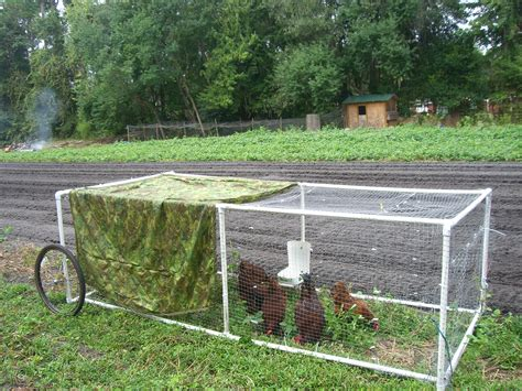 Diy Chicken Tractor Pvc