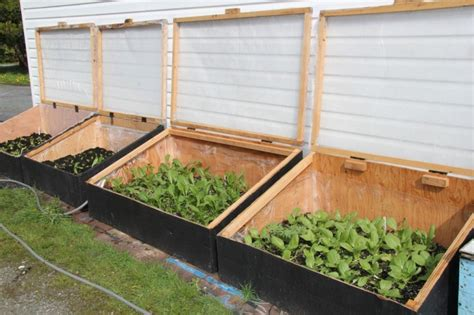 Diy Cold Frames For Gardening