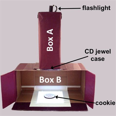 Diy Cookie Projector