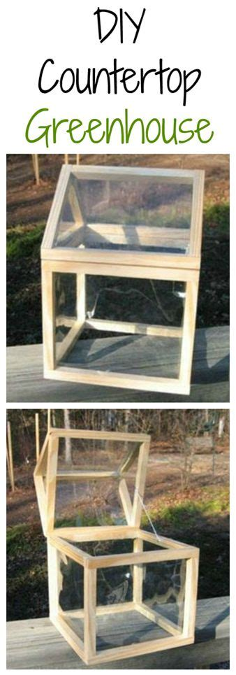 Diy Countertop Greenhouse