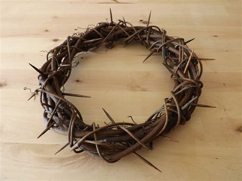 Diy Crown Of Thorns