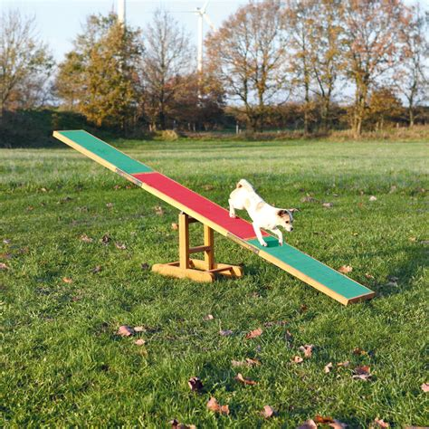Diy Dog Agility Teeter