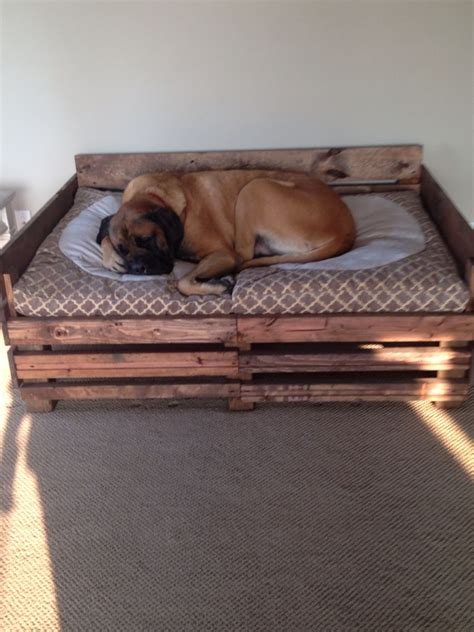 Diy Dog Bed For Mastiff Pitbull