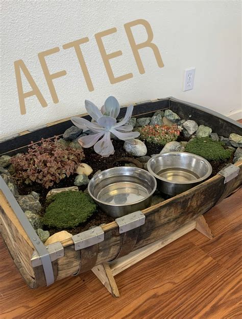 Diy Dog Bowl Planter