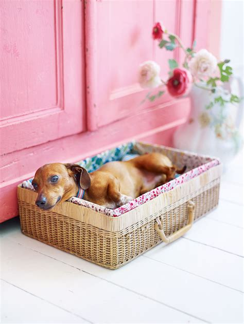 Diy Dog Nesting Beds