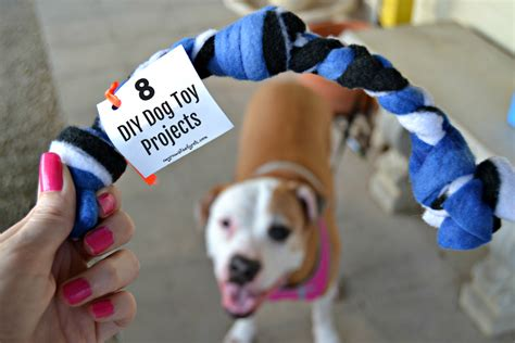 Diy Dog Toys Pinterest