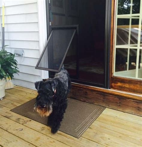 Diy Door Protection Dogs