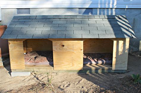 Diy Double Dog House Plans