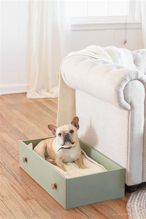 Diy Dresser Drawer Dog Bed