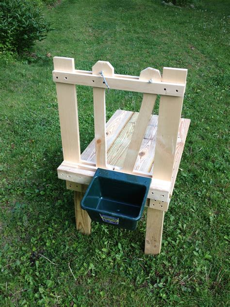 Diy Dwarf Goat Milking Stand For Sale
