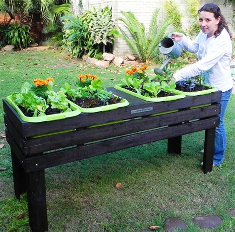 Diy Elevated Vegetable Planter Box