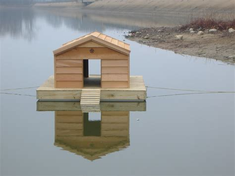 Diy Floating Duck House Plans
