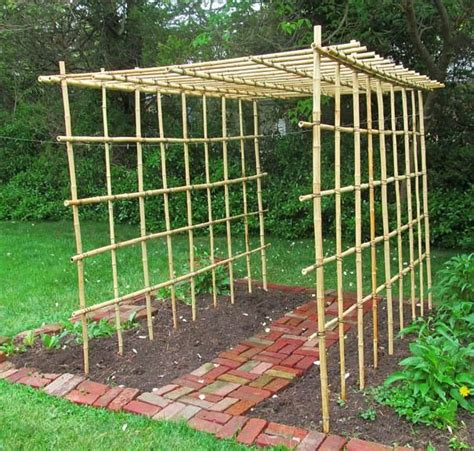 Diy Gate Arbor With Bamboo