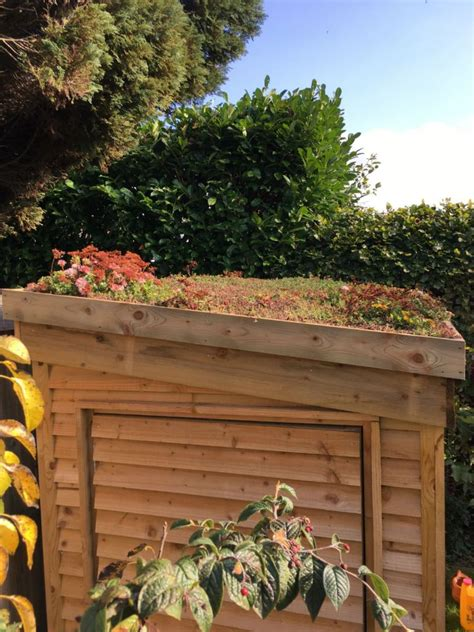 Diy Green Roof Shed