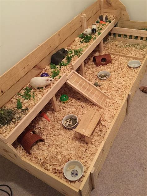 Diy Guinea Pig Cage For Sale