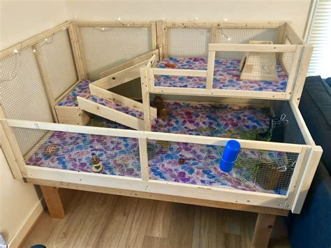Diy Guinea Pig Hutches