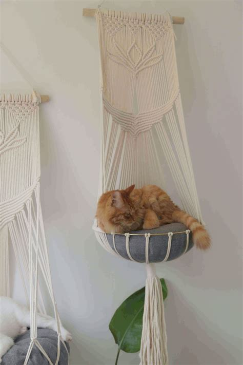 Diy Hanging Cat Bed