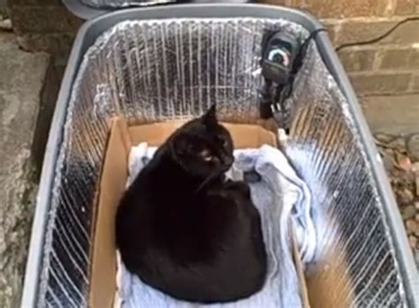 Diy Heated Cat Shelter