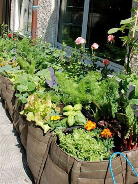 Diy Home Garden For Veggies