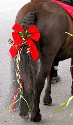 Diy Horse Bow For Parade