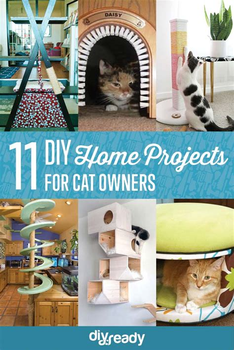 Diy House Projects For Cat Lovers